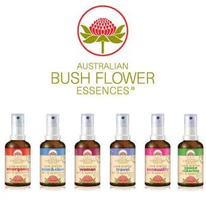 how to take bush flower essences